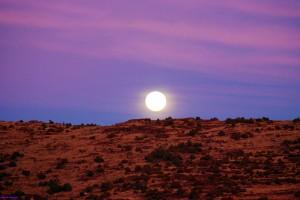 Moonrise Desert